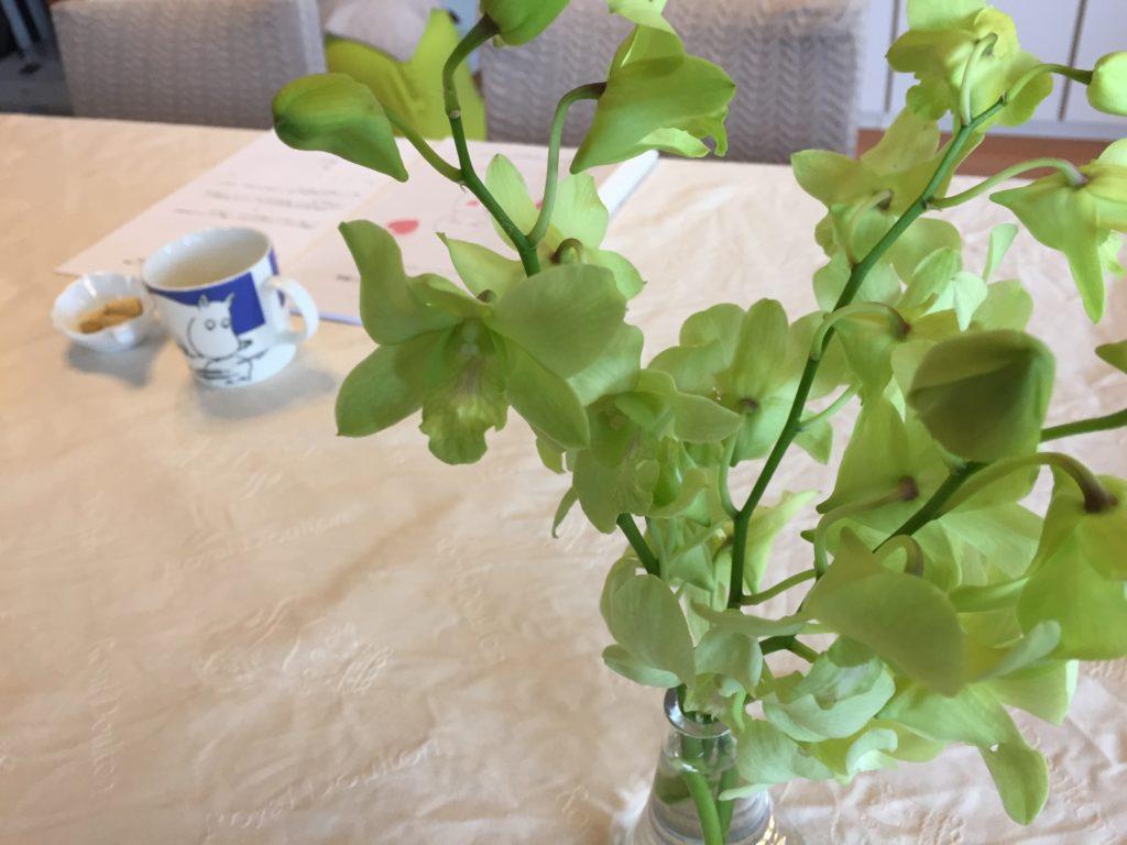 蘭の花 ペアレントトレーニング