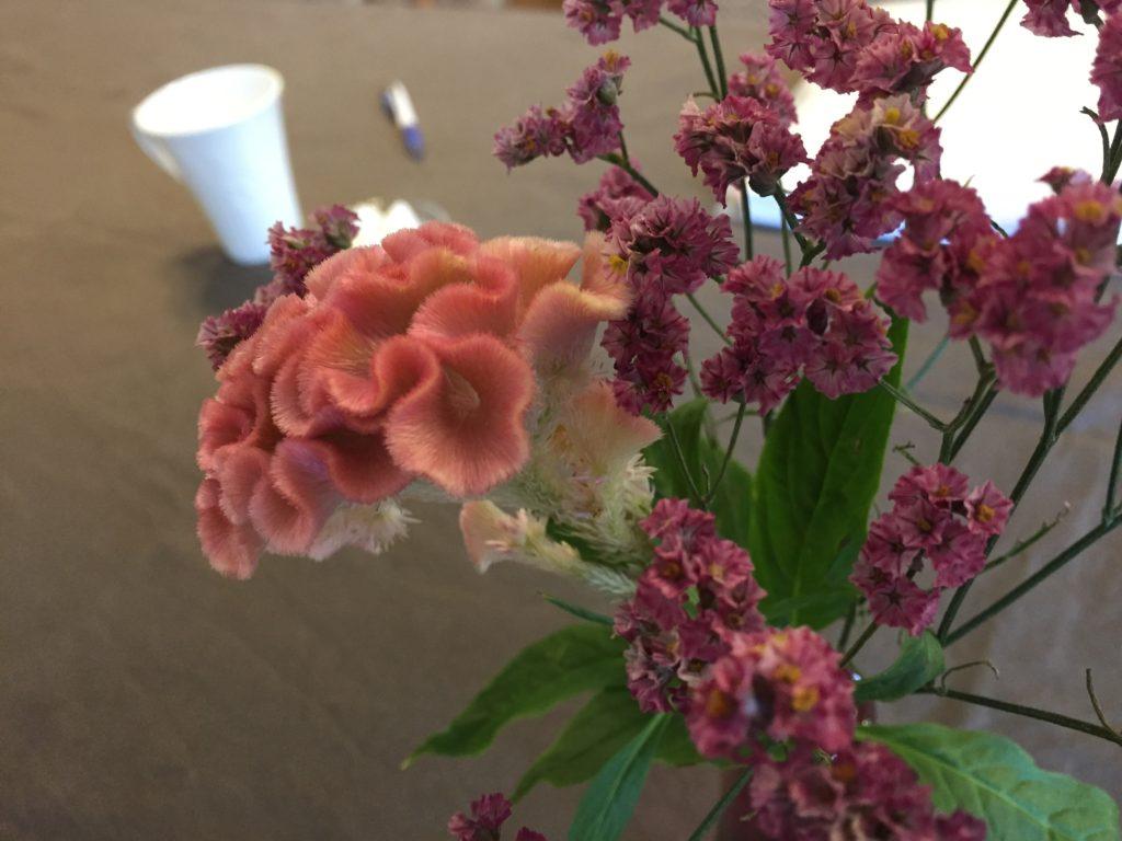 けいとうの花 ペアレントトレーニング